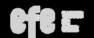 logo efe_edited.png