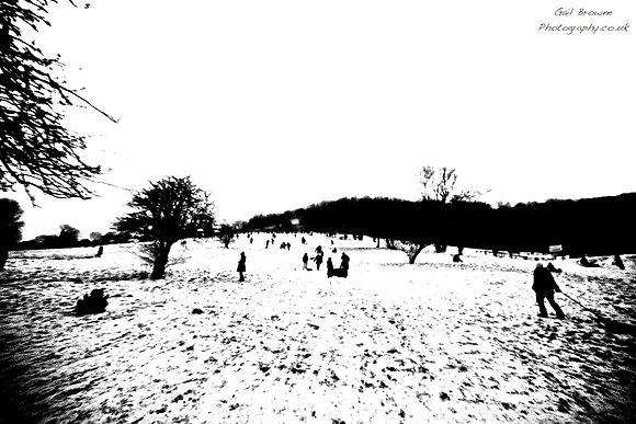 Sledging in Surrey