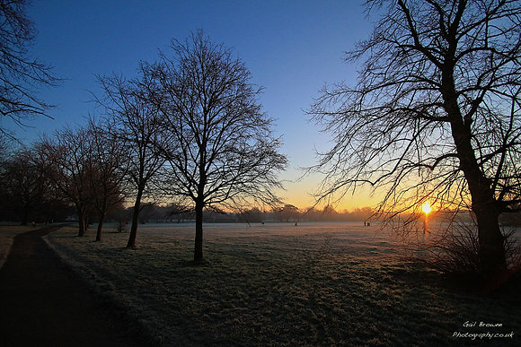 Sunrise over Tooting Bec Common, London