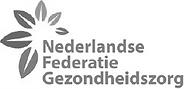 Logo NFG.png
