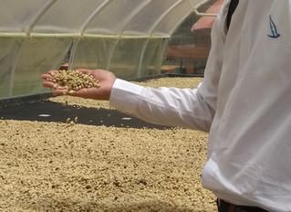 Floval Group llevando innovación y transferencia tecnológica en el uso de aguas para el sector cafet