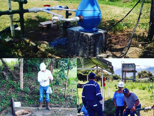Grupo Floval y su aporte a las granjas avicolas bio-seguras en Colombia