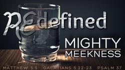 Redefined - Meek