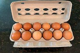 EggsGast_edited_edited.jpg