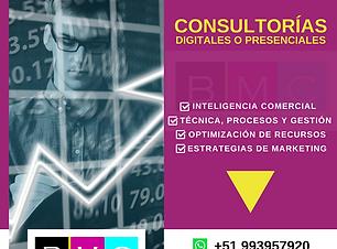 CONSULTORÍA.png