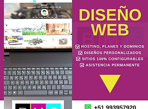 DISEÑO WEB (1).png
