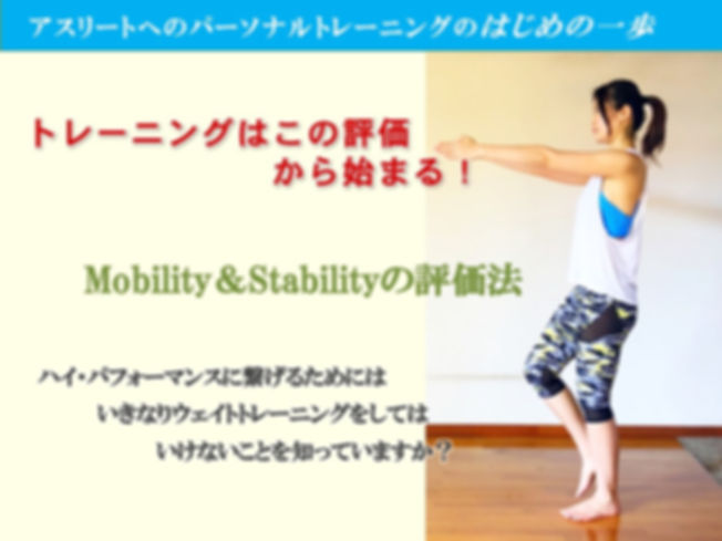 MOBILITY&STABILITY-20120.3.jpg