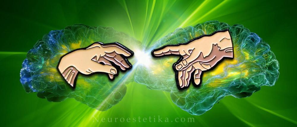 neuroestética + humanidades + educación