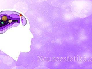 Neurociencia y Habilidades de la Imaginación: ¿cómo cambian la educación?