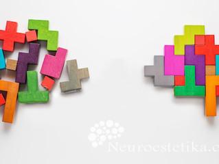 Derrumbando el Mito: ¿Es mejor el cerebro científico que el cerebro artístico?