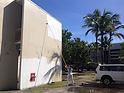 Mural Colegio de San Juan 8.jpg