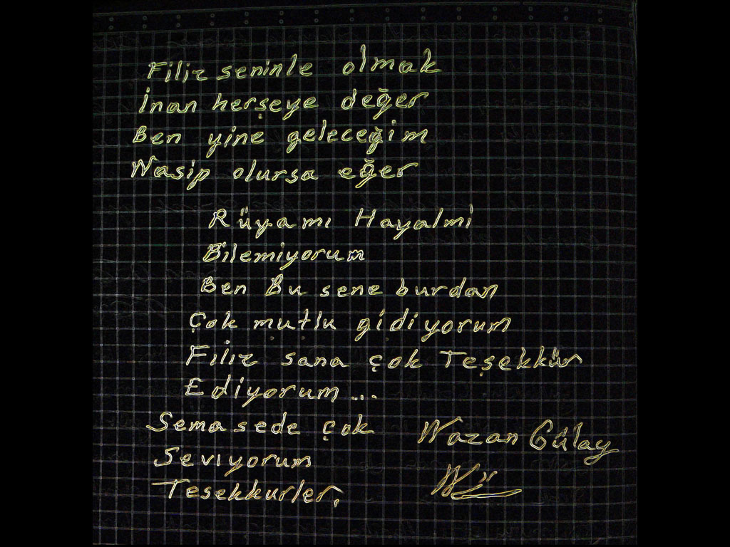 Nazan Gülay