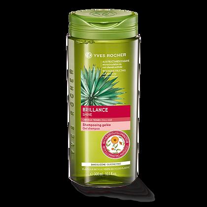 Brillance - Shampooing Gelée 300 ml