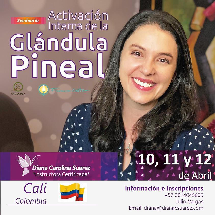 Seminario de Activacion Interna de la Glándula Pineal