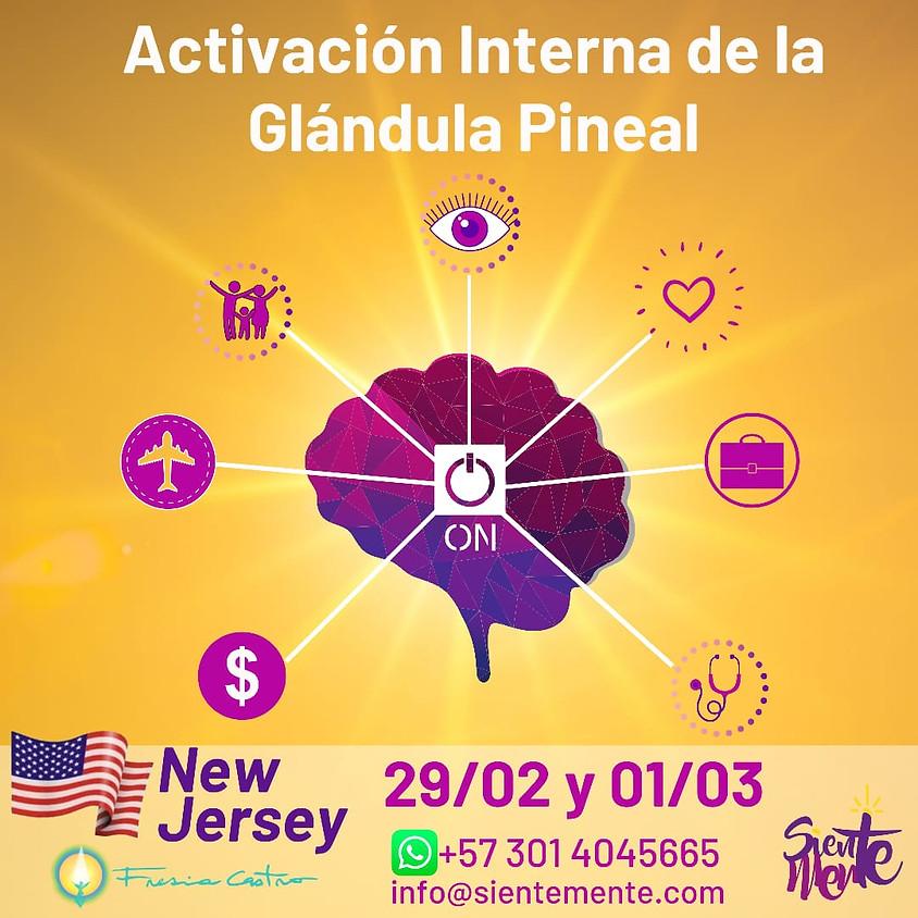 Activación Interna de la Glándula Pineal