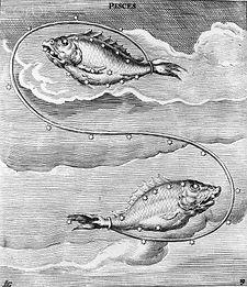 Peixes 1.jpg