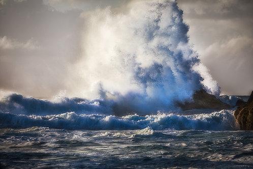 Wild Ocean Break