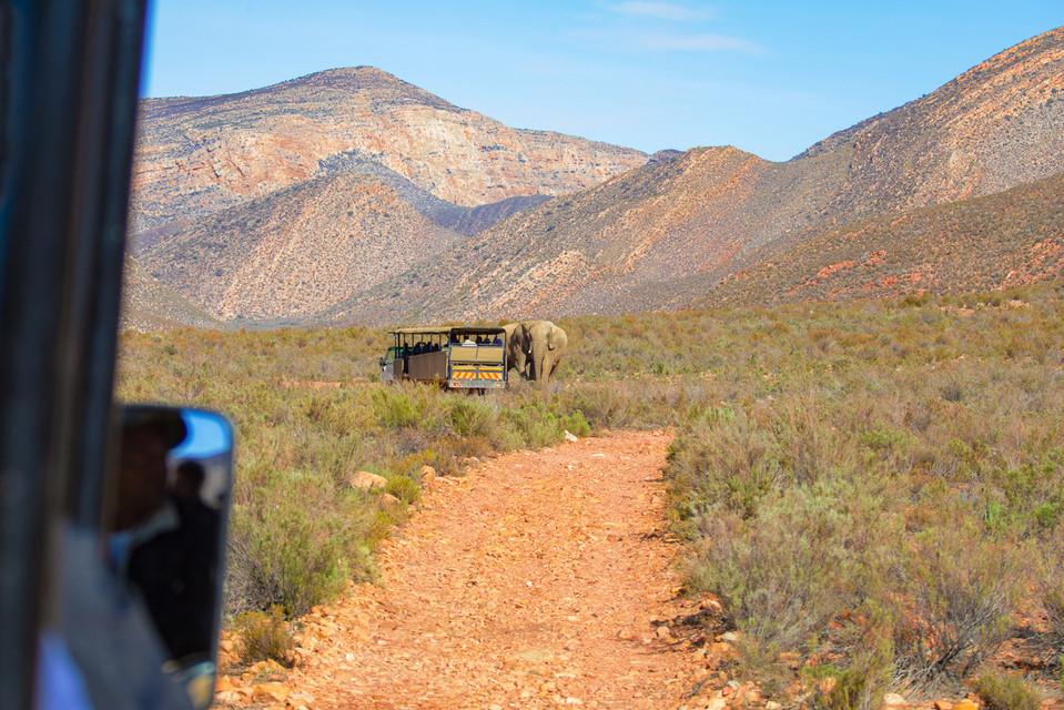 South Africa-7.jpg