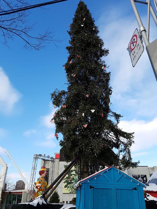 Ugly Christmas Tree.An Ugly Christmas Tree