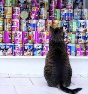 fidele- שימורי מזון איכותי לכלבים וחתולים