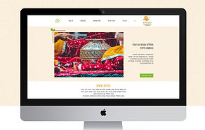 Shuli_Website mockup 01.jpg