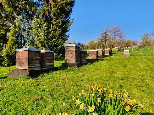 Bienenstand_April2021.jpg