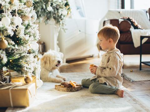 Árvore de Natal segura para crianças e pets