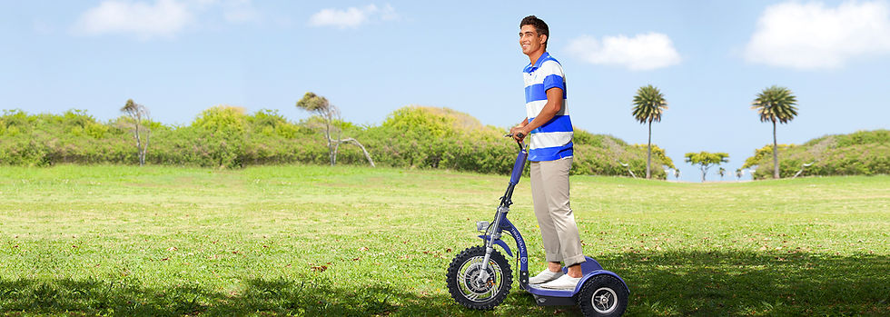 3 Wheel Electric Scooters Triad 750 CSX.