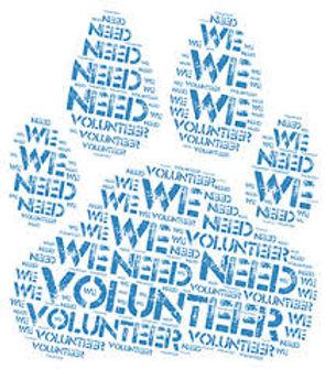 We need Volunteer.jpg