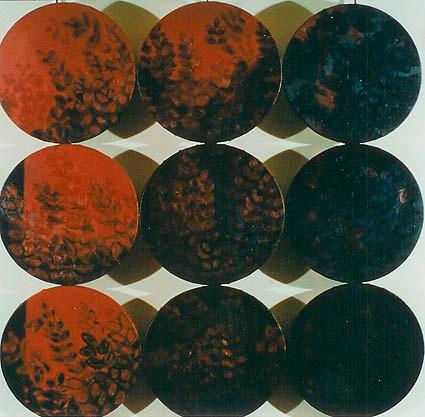 Dokunaklı Doğal Biçimler. T.Ü.Y.B. 30 x 30 cm.