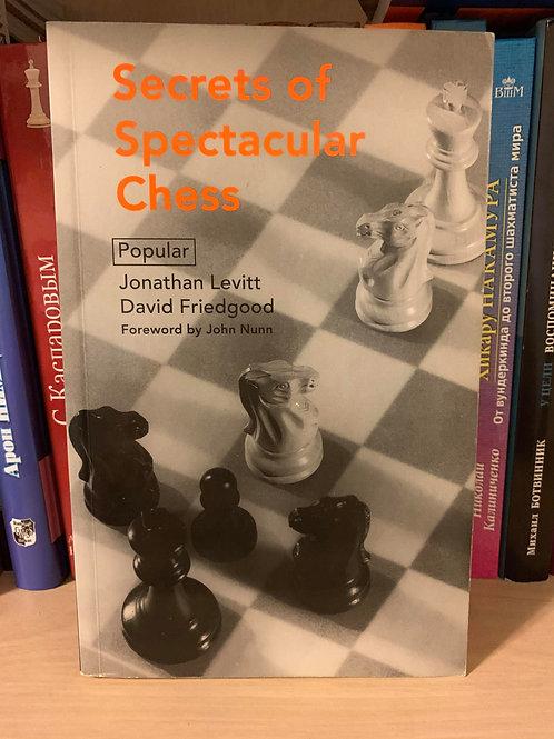 Secrets of spectacular chess. J. Levitt and D. Friedgood