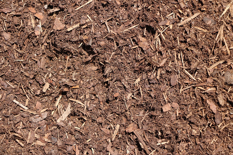 composted pine bark substrate.jpg