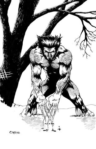 Feral Wolverine