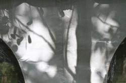 White Canvas with Dark Shadows