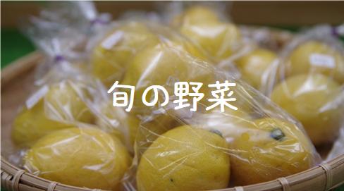 旬の野菜.png