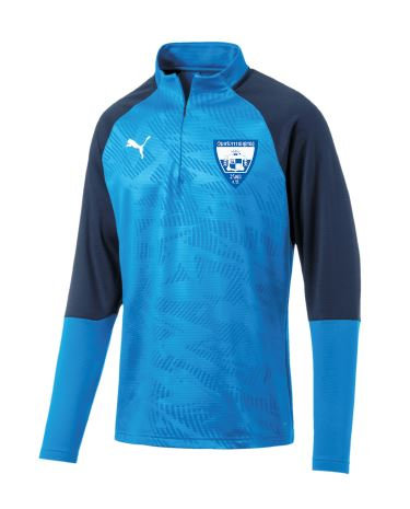 PUMA CUP TRAINING 1/4 ZIP T CORE
