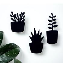 3 magnety rostlinky.jpg