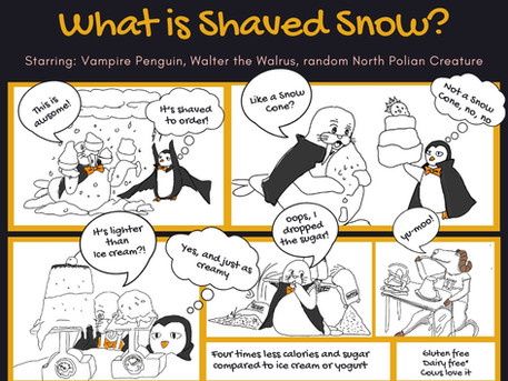 What is Shaved Snow?