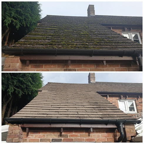 big roof 1.jpg