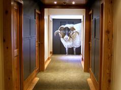 ascenseur decor bouc hotel pralong vue d