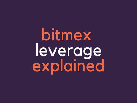 BitMEX leverage examples