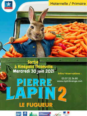 Pierre Lapin 2.png