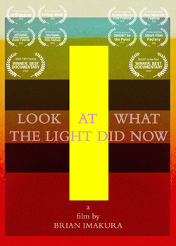 """""""LOOK AT WHAT THE LIGHT DID NOW"""""""