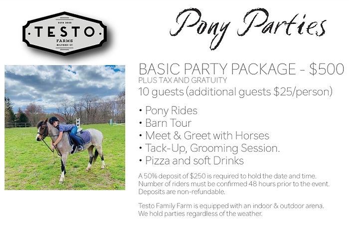 Pony Party at Testo Family Farm