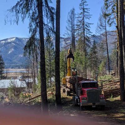 Detroit Logging Truck 2 .jpg