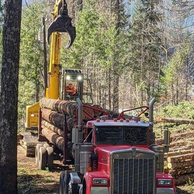 Detroit Logging Truck .jpg