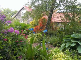 Garden Open at Humbie Dean