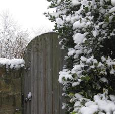 Grey Cottage Gate