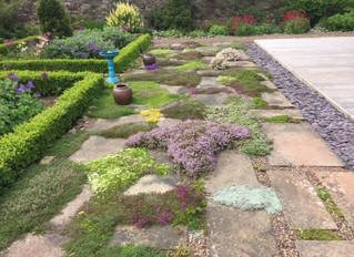 June & July Garden Galleries