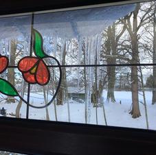 Anthea Skea - Poppies & Icicles